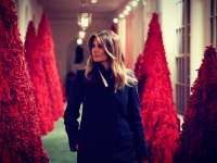 Az Első Asszony fája - karácsonyfák a Fehér Házban