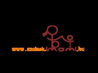 Szolnok és Jász-Nagykun-Szolnok megye: betegség