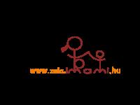 Zalaegerszeg és Zala megye: betegség